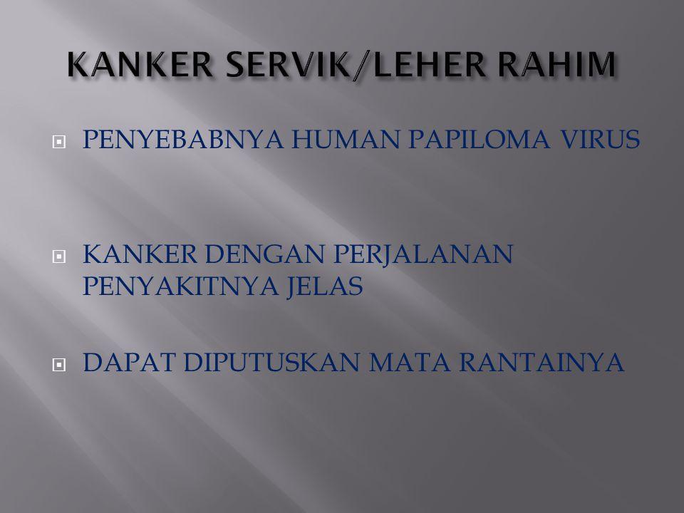KANKER SERVIK/LEHER RAHIM