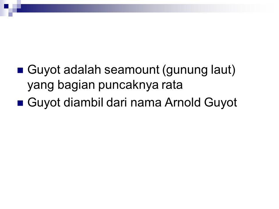 Guyot adalah seamount (gunung laut) yang bagian puncaknya rata