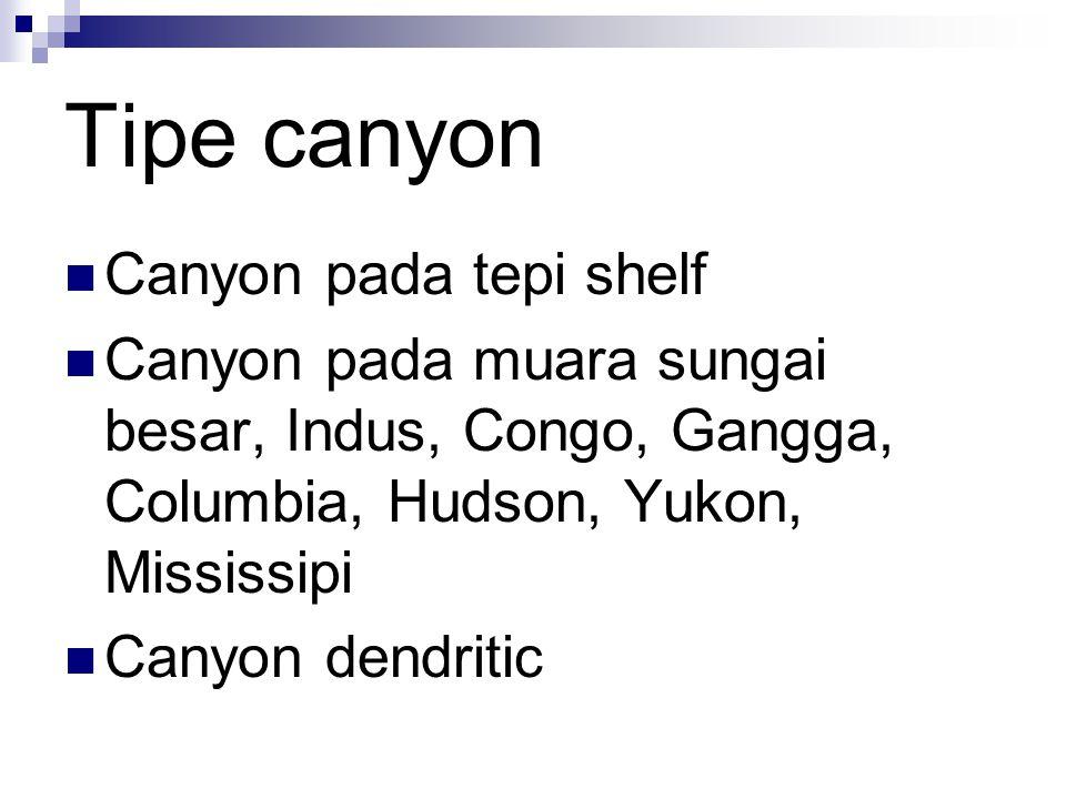 Tipe canyon Canyon pada tepi shelf