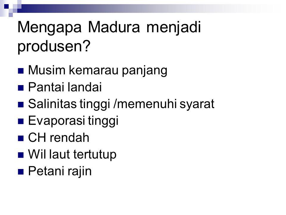 Mengapa Madura menjadi produsen