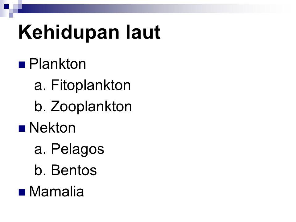 Kehidupan laut Plankton a. Fitoplankton b. Zooplankton Nekton