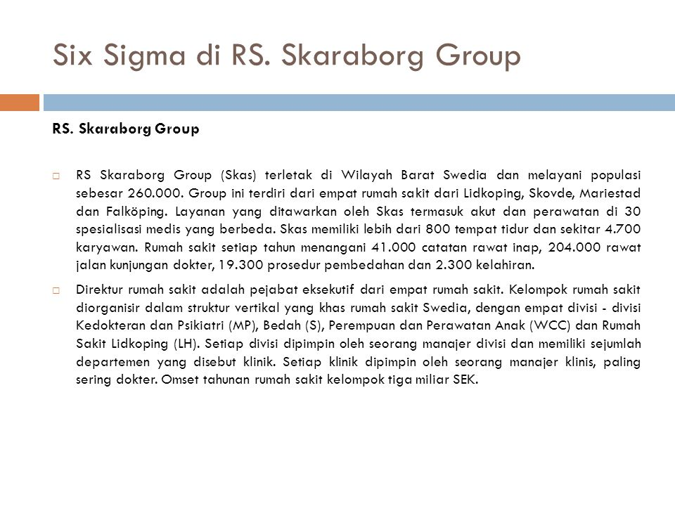 Six Sigma di RS. Skaraborg Group