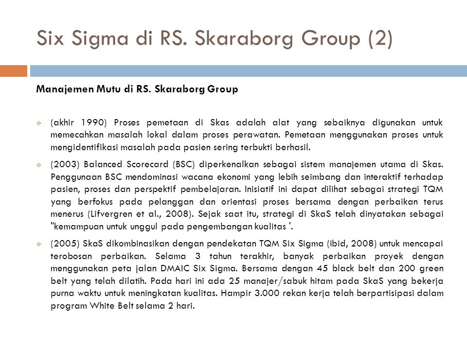 Six Sigma di RS. Skaraborg Group (2)