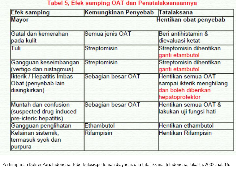 Perhimpunan Dokter Paru Indonesia
