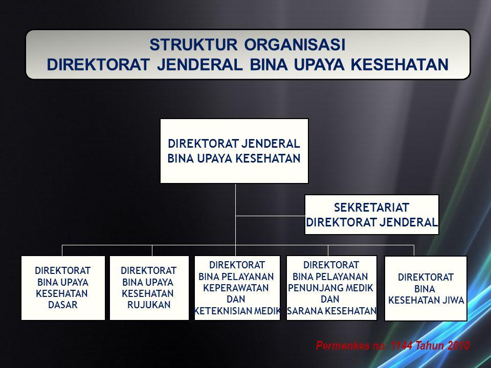 STRUKTUR ORGANISASI DIREKTORAT JENDERAL BINA UPAYA KESEHATAN