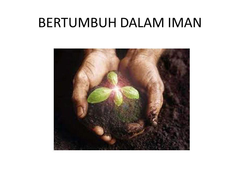 BERTUMBUH DALAM IMAN