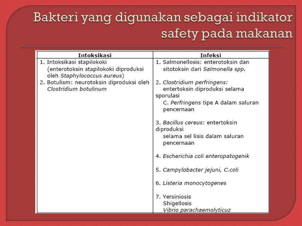 Bakteri yang digunakan sebagai indikator safety pada makanan