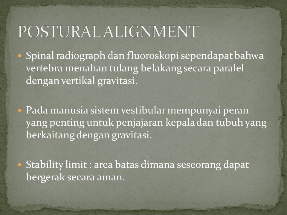 POSTURAL ALIGNMENT Spinal radiograph dan fluoroskopi sependapat bahwa vertebra menahan tulang belakang secara paralel dengan vertikal gravitasi.