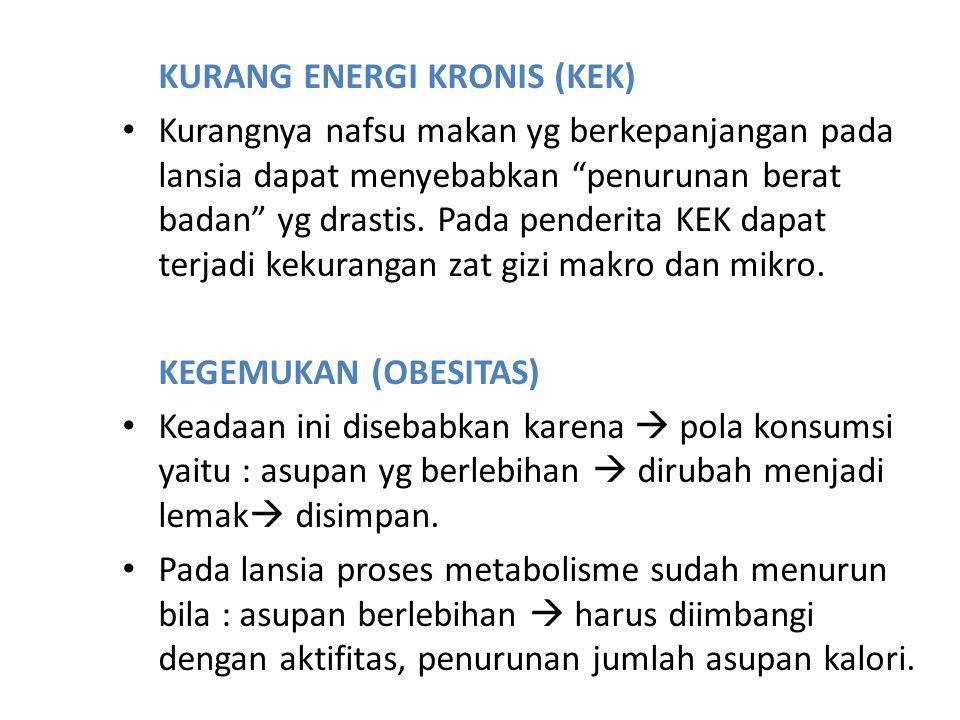 KURANG ENERGI KRONIS (KEK)