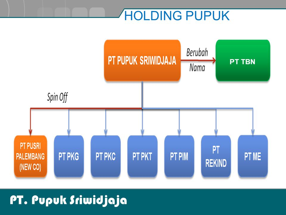 HOLDING PUPUK PT TBN