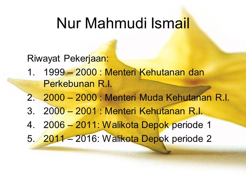 Nur Mahmudi Ismail Riwayat Pekerjaan: