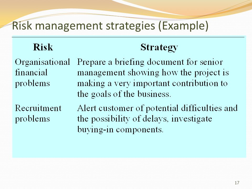 Risk management strategies (Example)