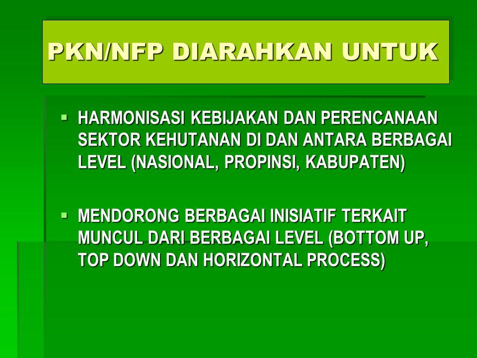 PKN/NFP DIARAHKAN UNTUK