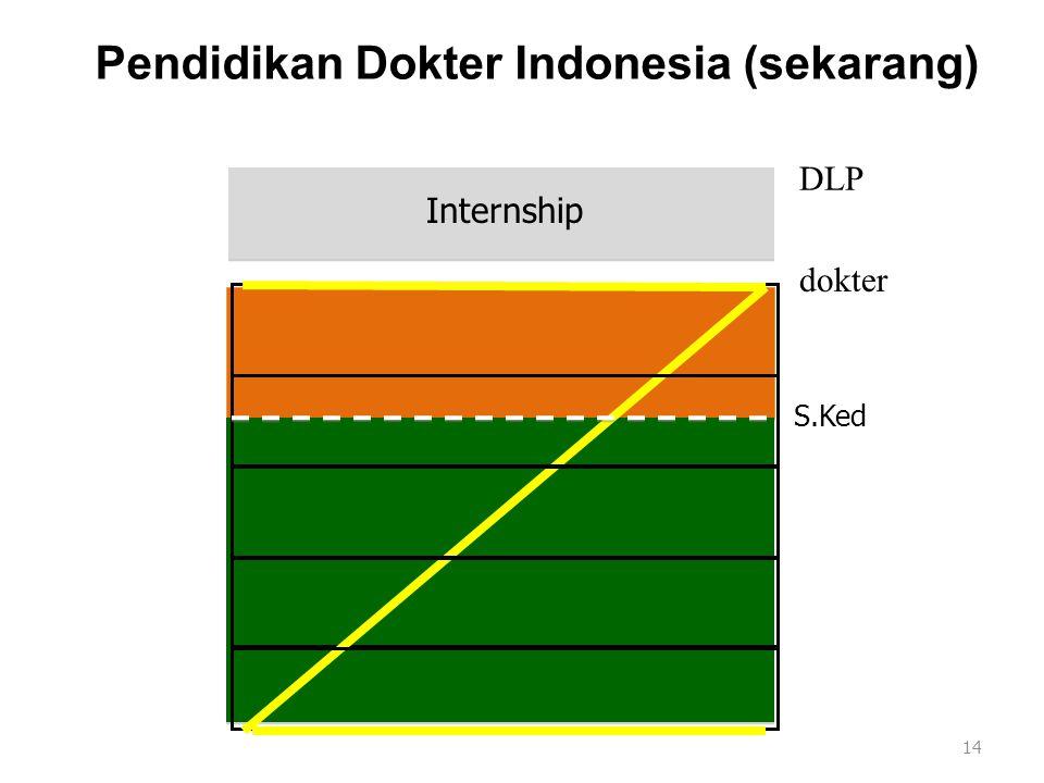 Pendidikan Dokter Indonesia (sekarang)