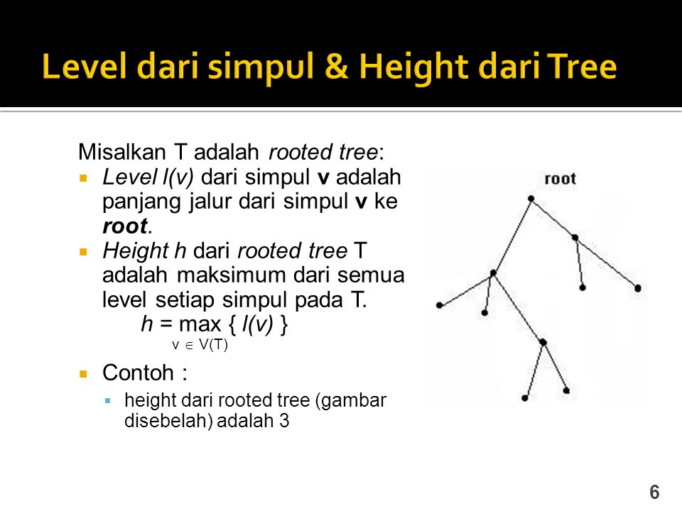 Level dari simpul & Height dari Tree
