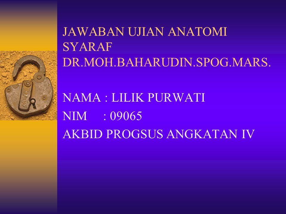 JAWABAN UJIAN ANATOMI SYARAF DR.MOH.BAHARUDIN.SPOG.MARS.