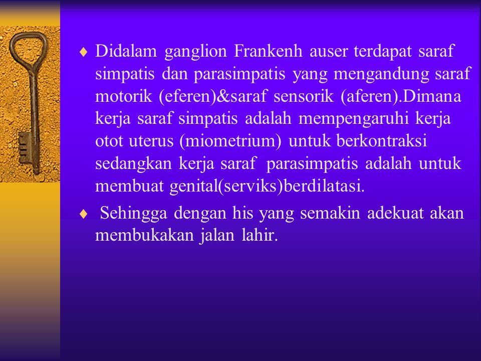 Didalam ganglion Frankenh auser terdapat saraf simpatis dan parasimpatis yang mengandung saraf motorik (eferen)&saraf sensorik (aferen).Dimana kerja saraf simpatis adalah mempengaruhi kerja otot uterus (miometrium) untuk berkontraksi sedangkan kerja saraf parasimpatis adalah untuk membuat genital(serviks)berdilatasi.