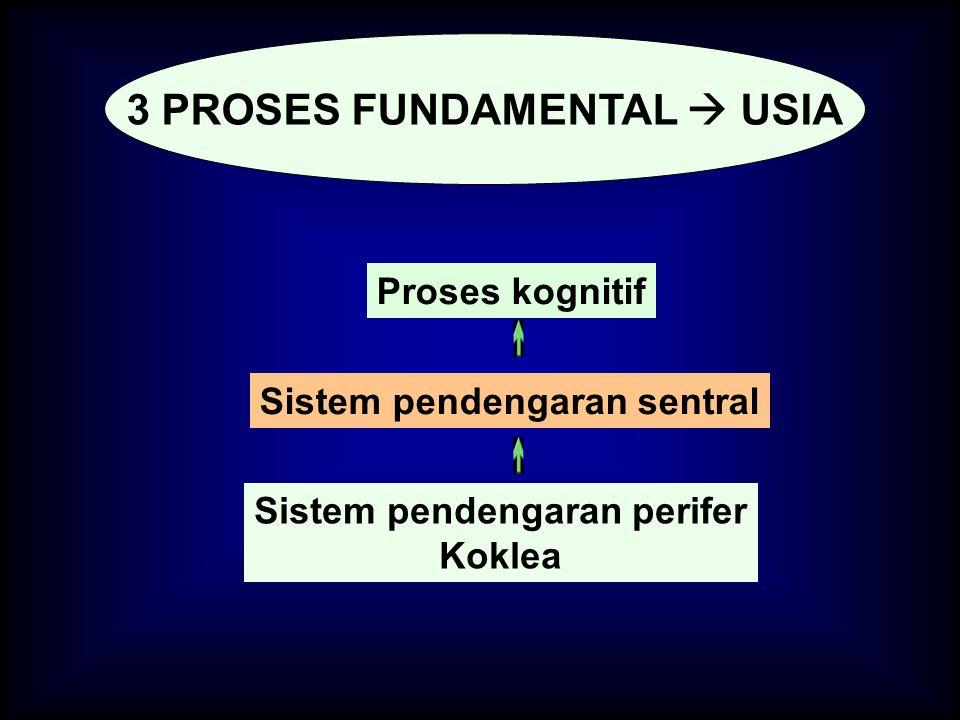 3 PROSES FUNDAMENTAL  USIA