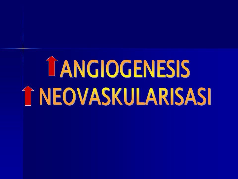 ANGIOGENESIS NEOVASKULARISASI