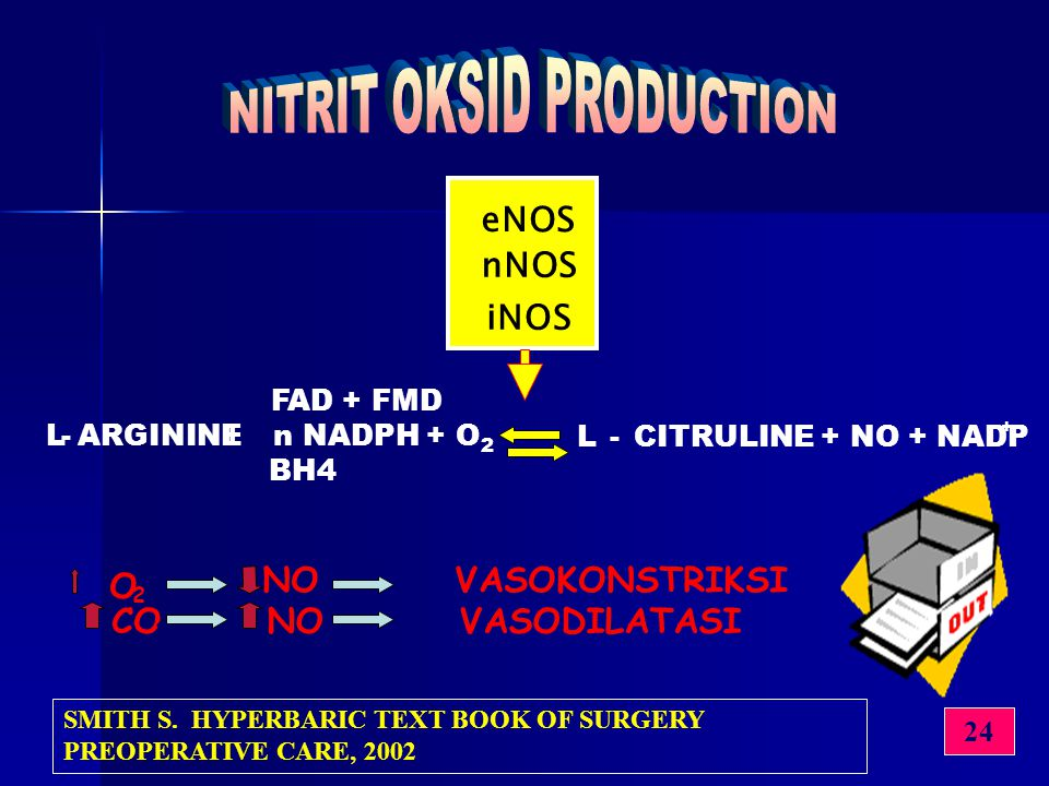 NITRIT OKSID PRODUCTION