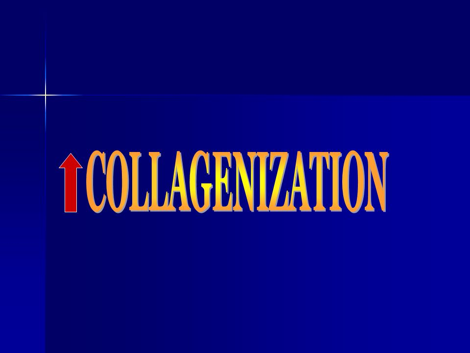 COLLAGENIZATION