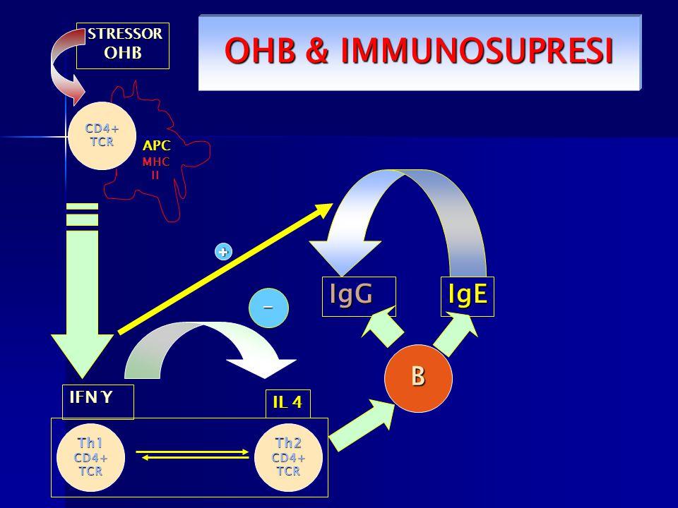 OHB & IMMUNOSUPRESI IgG IgE B - OHB + IFN Ƴ IL 4 STRESSOR APC Th1 Th2