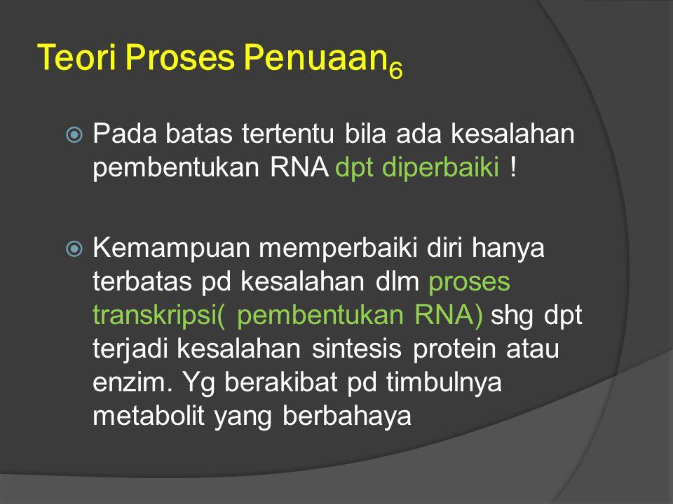 Teori Proses Penuaan6 Pada batas tertentu bila ada kesalahan pembentukan RNA dpt diperbaiki !