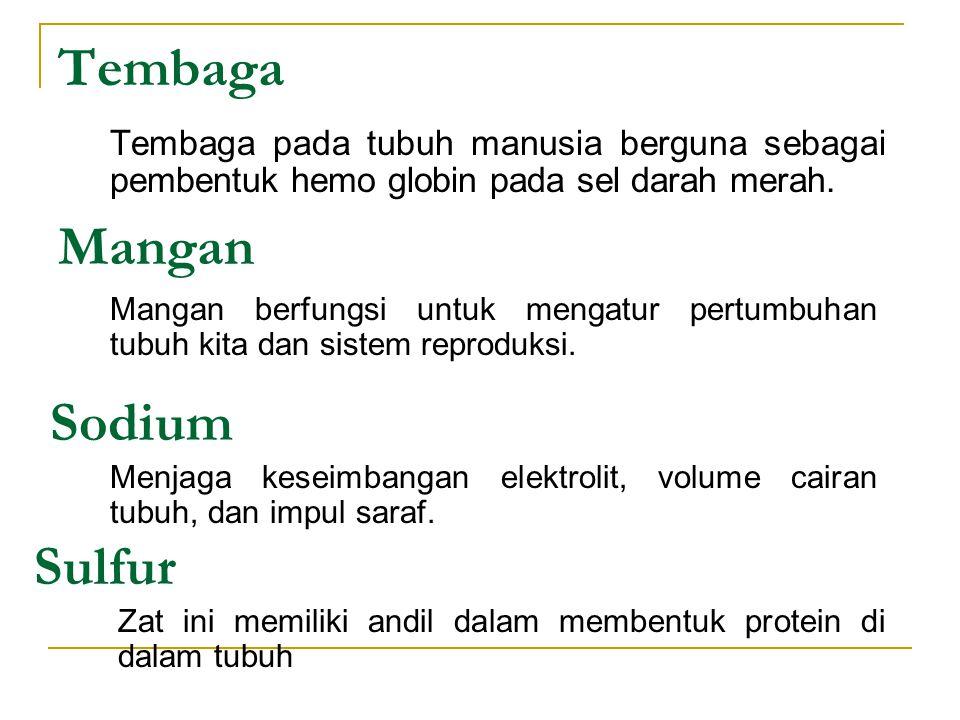 Tembaga Mangan Sodium Sulfur