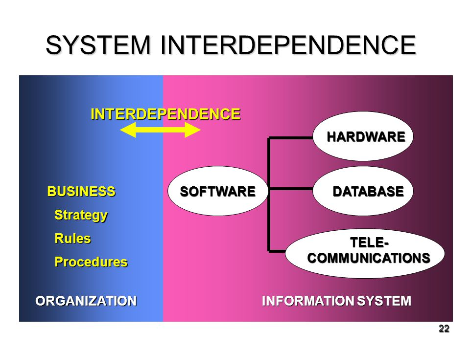SYSTEM INTERDEPENDENCE