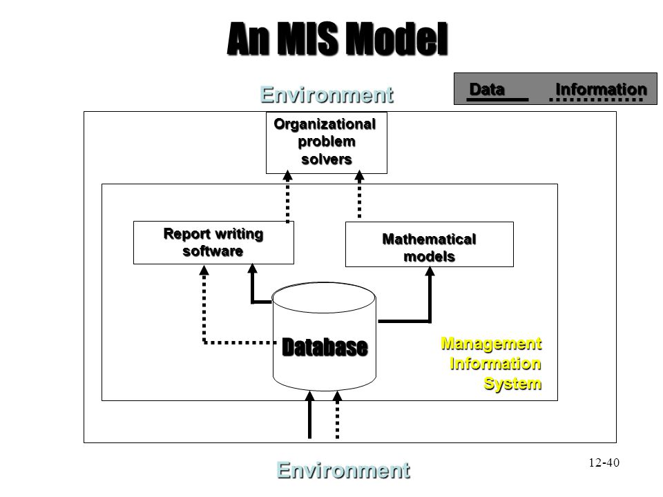 An MIS Model Environment Database Environment Data Information