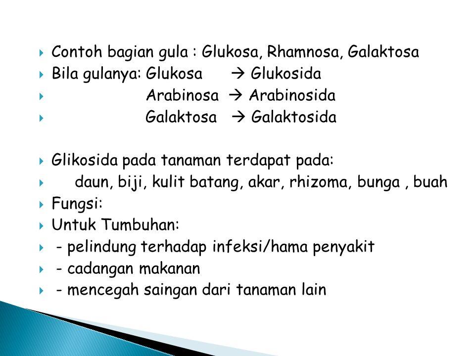 Contoh bagian gula : Glukosa, Rhamnosa, Galaktosa