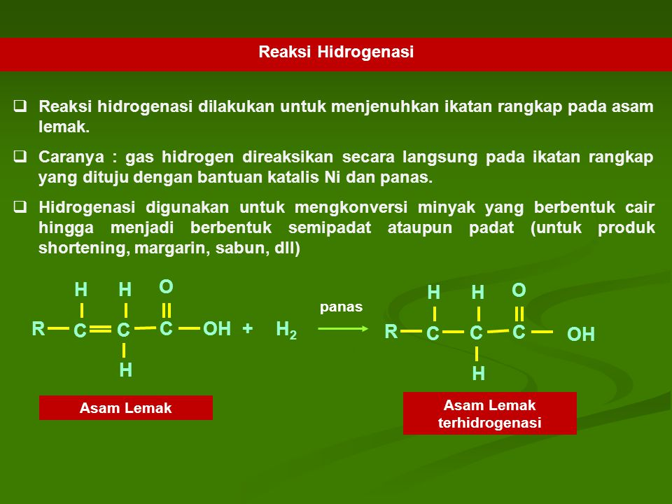 Asam Lemak terhidrogenasi