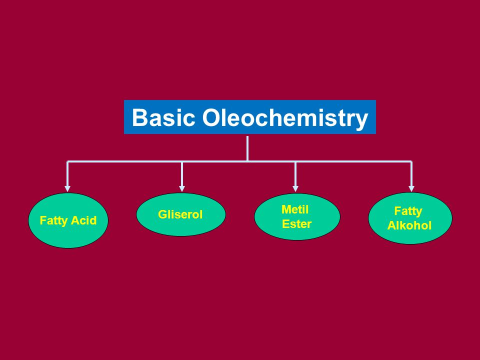 Basic Oleochemistry Fatty Acid Gliserol Metil Ester Fatty Alkohol