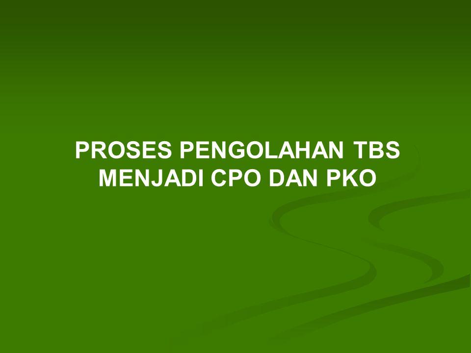 PROSES PENGOLAHAN TBS MENJADI CPO DAN PKO