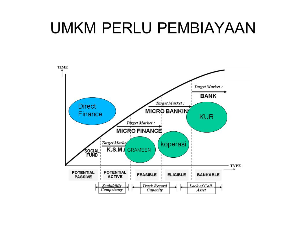 UMKM PERLU PEMBIAYAAN Direct Finance KUR koperasi GRAMEEN