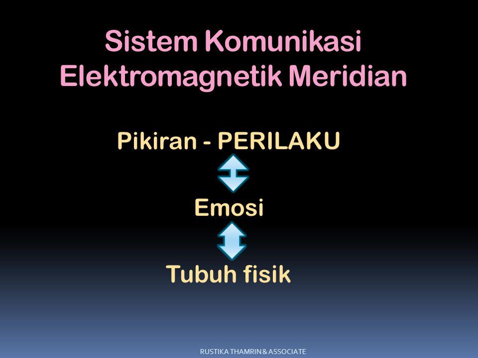 Sistem Komunikasi Elektromagnetik Meridian