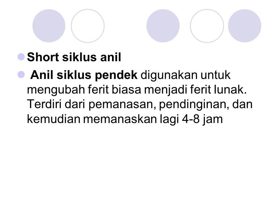 Short siklus anil