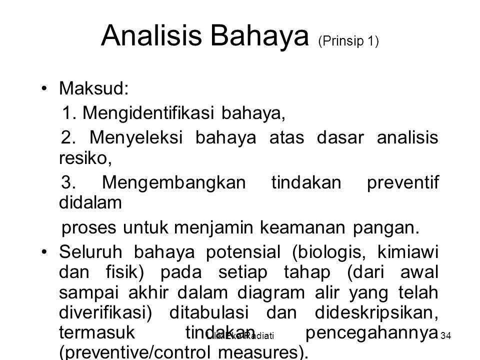 Analisis Bahaya (Prinsip 1)