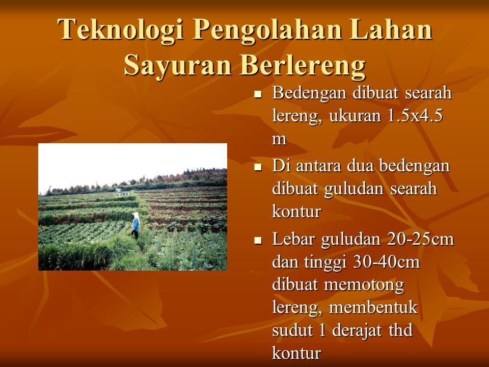 Teknologi Pengolahan Lahan Sayuran Berlereng