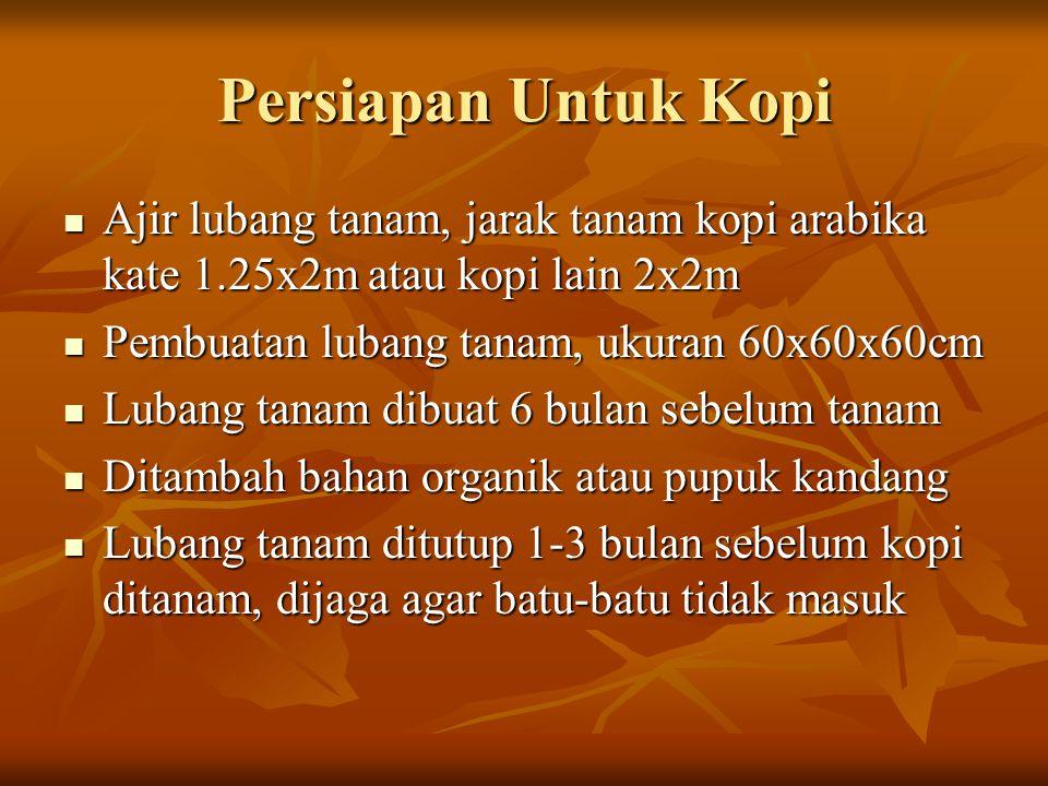 Persiapan Untuk Kopi Ajir lubang tanam, jarak tanam kopi arabika kate 1.25x2m atau kopi lain 2x2m. Pembuatan lubang tanam, ukuran 60x60x60cm.
