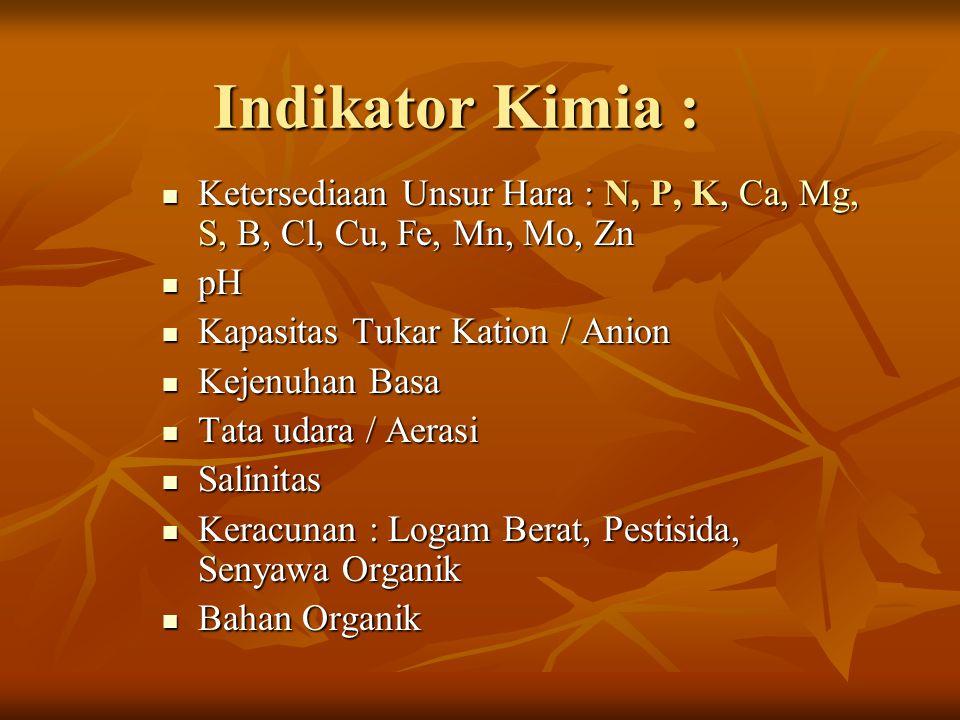 Indikator Kimia : Ketersediaan Unsur Hara : N, P, K, Ca, Mg, S, B, Cl, Cu, Fe, Mn, Mo, Zn. pH. Kapasitas Tukar Kation / Anion.