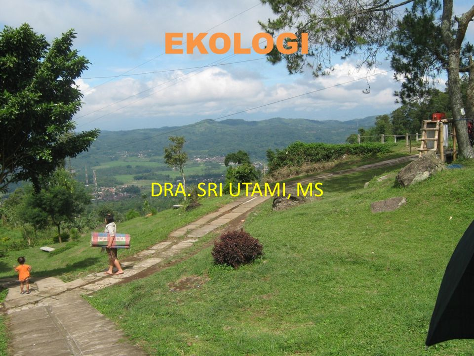 EKOLOGI DRA. SRI UTAMI, MS