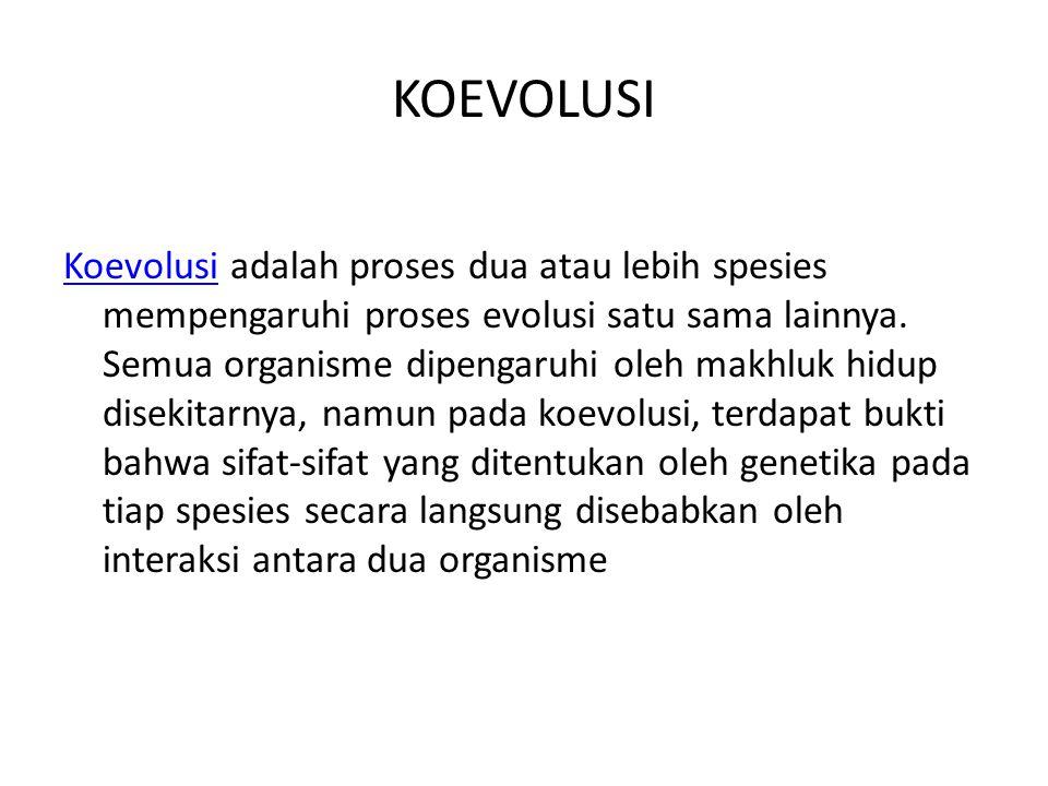 KOEVOLUSI