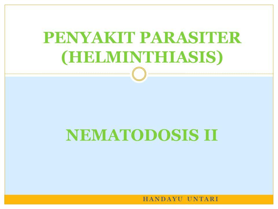 PENYAKIT PARASITER (HELMINTHIASIS) NEMATODOSIS II