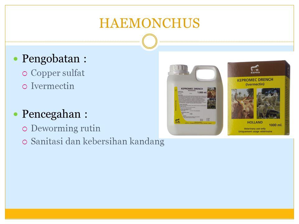 HAEMONCHUS Pengobatan : Pencegahan : Copper sulfat Ivermectin