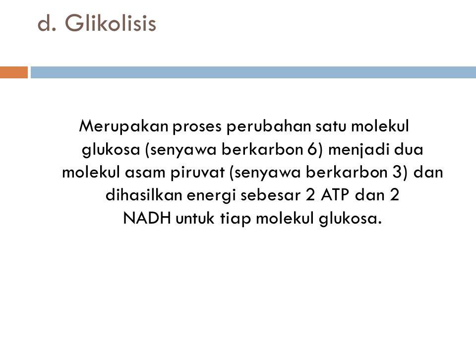d. Glikolisis