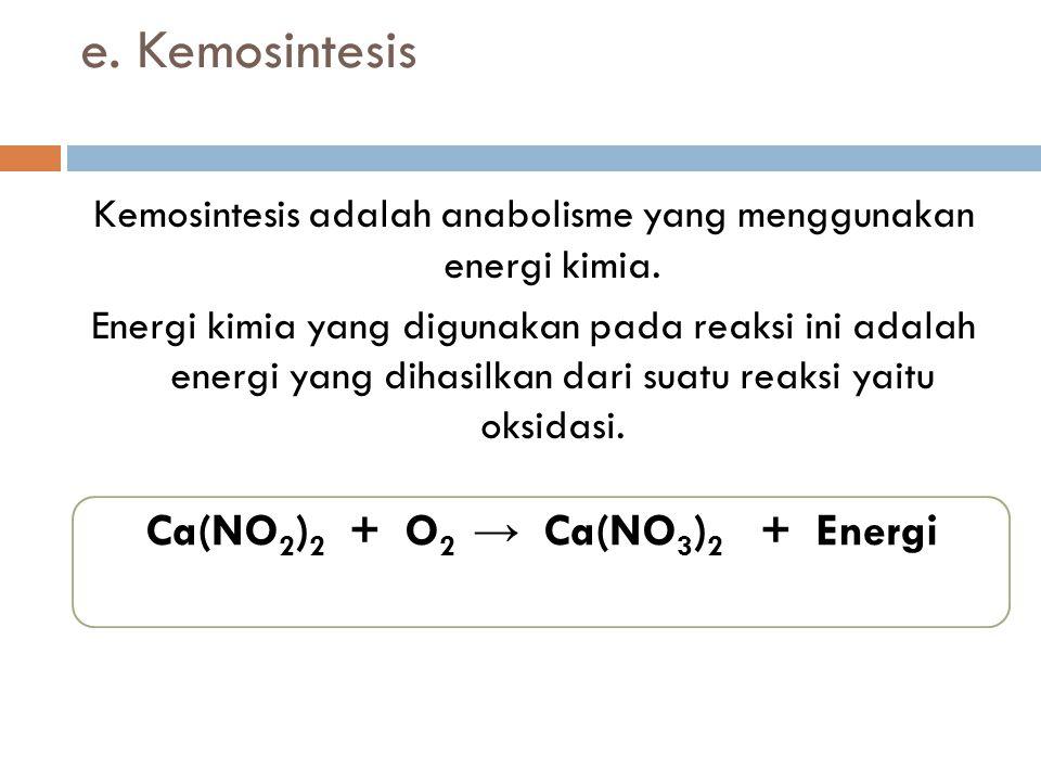 Ca(NO2)2 + O2 → Ca(NO3)2 + Energi
