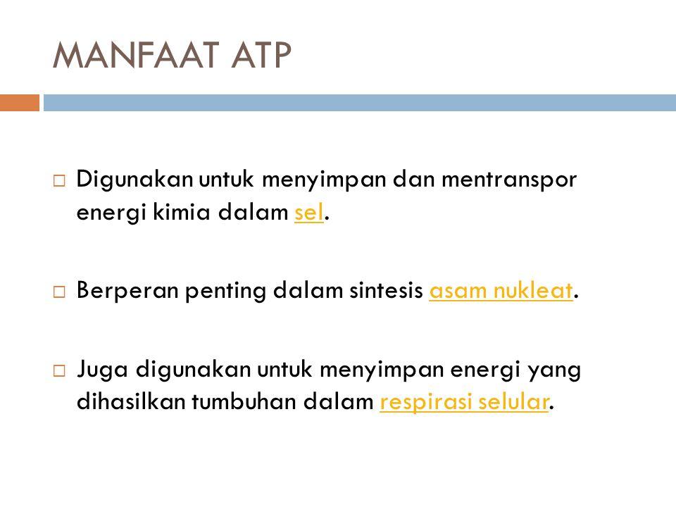 MANFAAT ATP Digunakan untuk menyimpan dan mentranspor energi kimia dalam sel. Berperan penting dalam sintesis asam nukleat.
