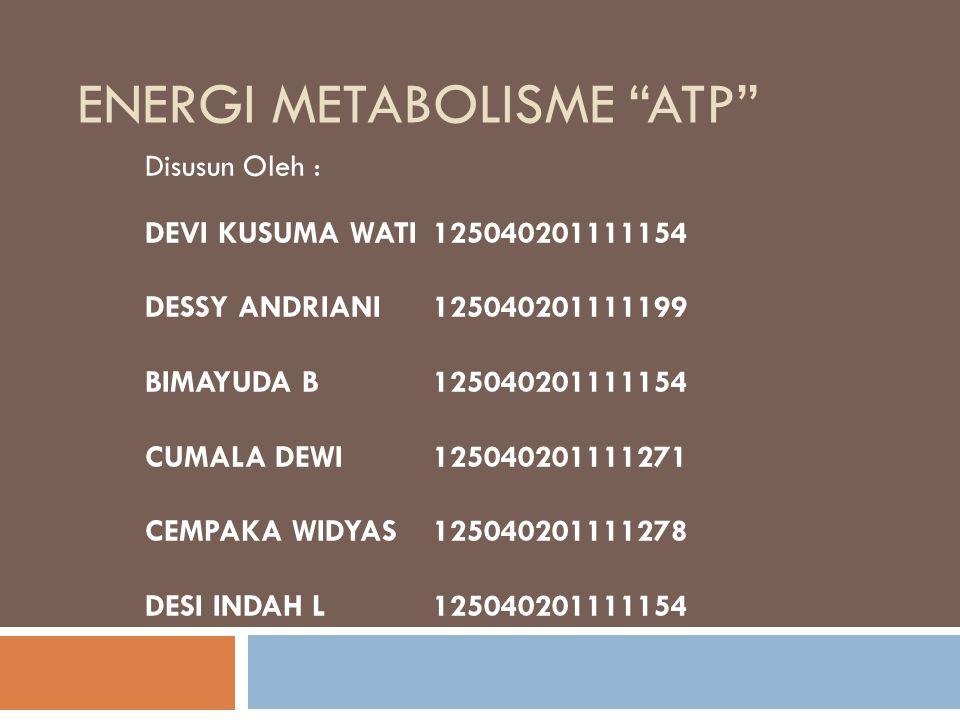 ENERGI METABOLISME ATP