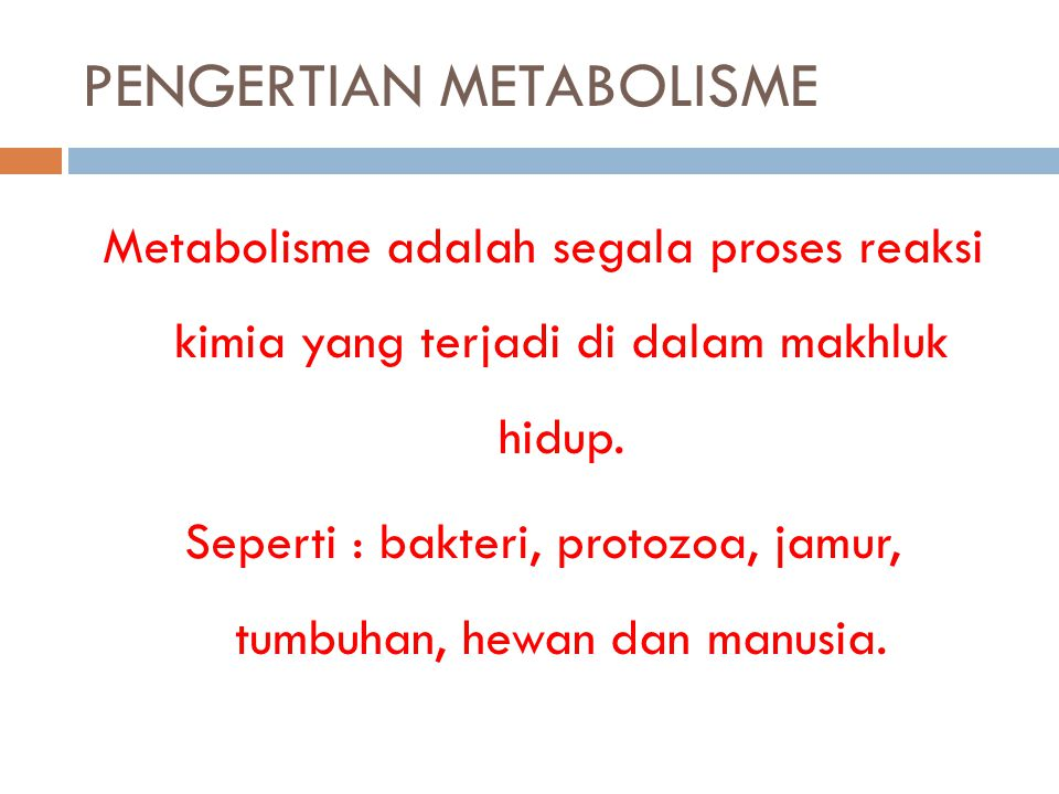 PENGERTIAN METABOLISME